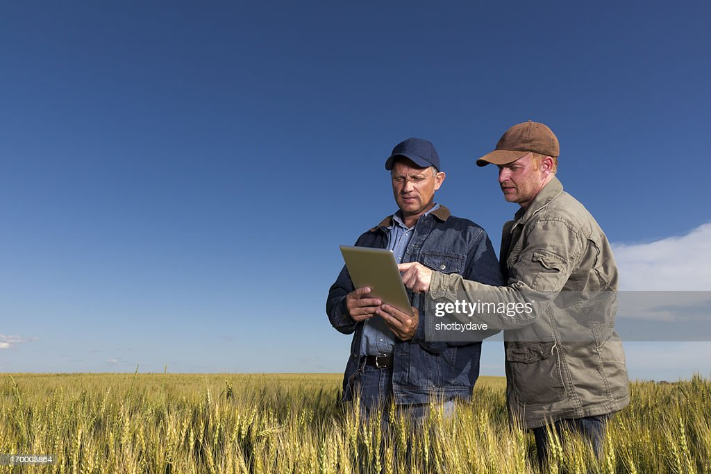 Farmers and Technology : Stock Photo