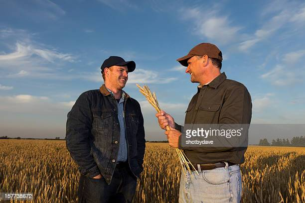 Farmers and Wheat