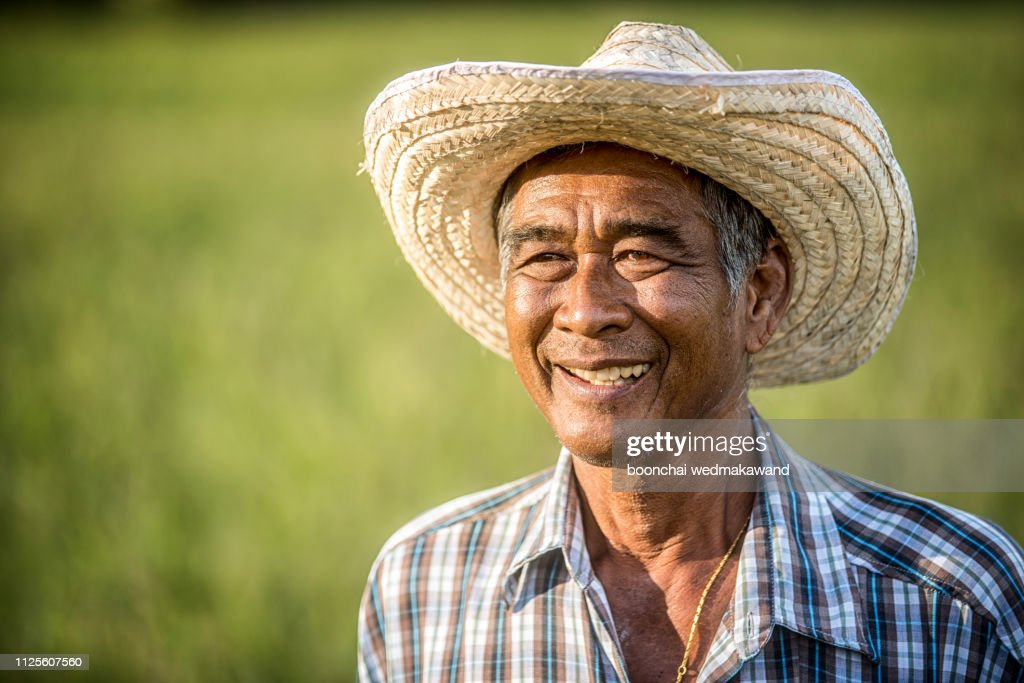 Farmers are happy with the success. : Stock Photo