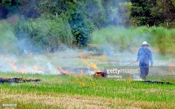 Farmers burn their fields after rice crops are harvested at a paddy near Sena in Ayutthaya province Thailand on Monday April 28 2008 Thailand's...