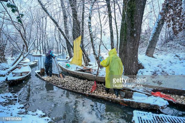 Farmers carry radish on boats in the Dal Lake during a snowfall in Srinagar on January 12 2020