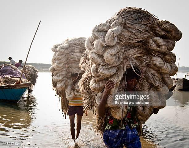Farmers carrying jute