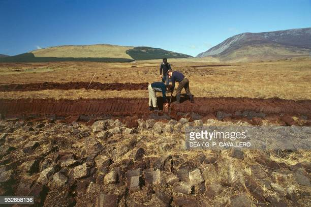 Farmers cutting peat turf near Dun Laoghaire County Dublin Ireland