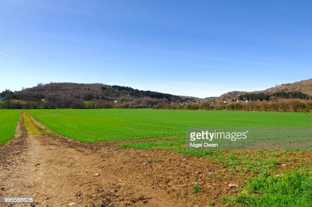 farmers field - nigel owen stock pictures, royalty-free photos & images