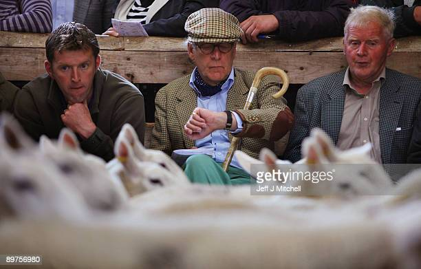 Farmers gather at Lairg's great annual sale on August 12 2009 in Lairg Scotland Lairg market hosts the annual lamb sale which is the biggest oneday...