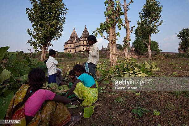 CONTENT] Farmers having lunch in a field in Orchha In the background the Chhatris cenotaphs to Orchha's rulers