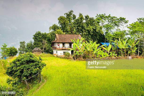 CHEWABESI PURWANCHAL NEPAL A farmers house surrounded by green fields and trees in Arun Nadi Valley