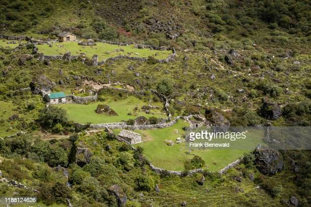 Farmers houses surrounding fields framed by stone walls located in Gokyo valley
