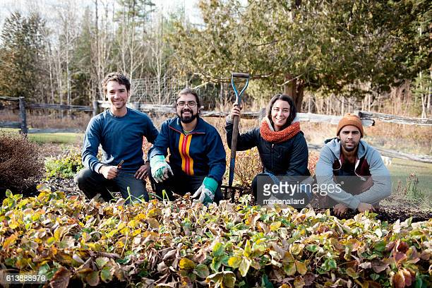 farmers in an organic garden on fall morning - organic farm stock photos and pictures
