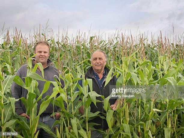 Farmers In Crop Field