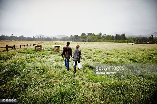 Farmers in pasture on rainy morning rear view