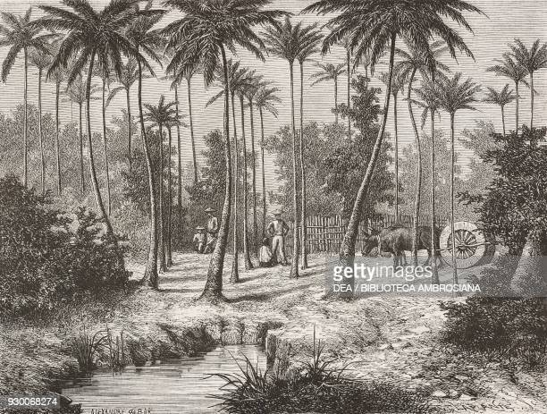 Farmers in Tay Ninh Vietnam drawing by Alexandre De Bar by a sketch adapted from Voyage en Cochinchine by Albert Morice from Il Giro del mondo...