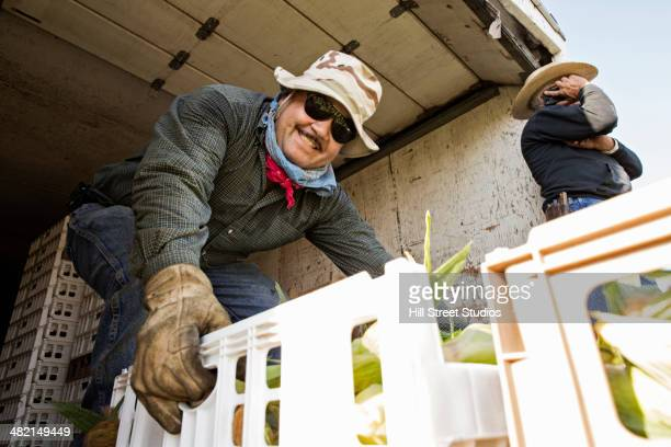 farmers loading corn into truck - farm worker stock pictures, royalty-free photos & images