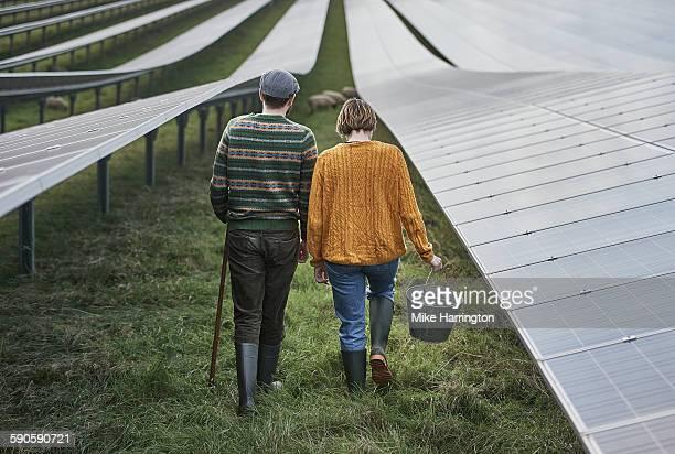 Farmers maintaining their solar farm