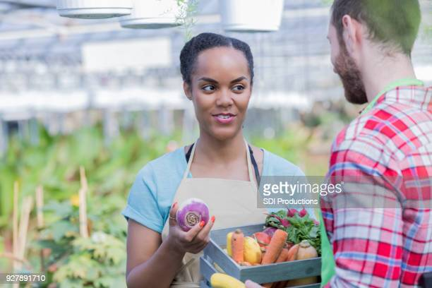 farmer's market employee talks with coworker about fresh vegetables - rutabaga stock pictures, royalty-free photos & images
