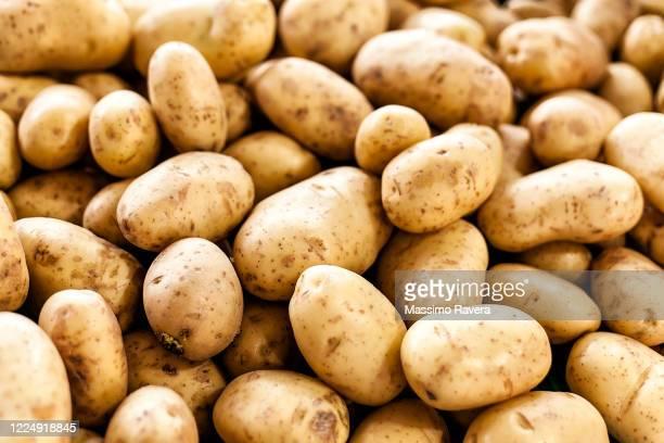 farmers market - organic potatoes - raw potato stock pictures, royalty-free photos & images