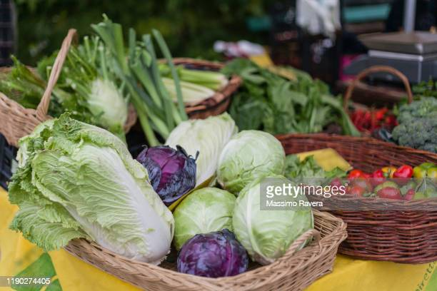 farmers market - organic veggies - cabbage stock pictures, royalty-free photos & images
