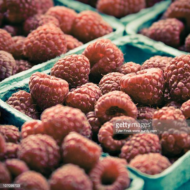 farmer's market raspberries - sursly stock pictures, royalty-free photos & images