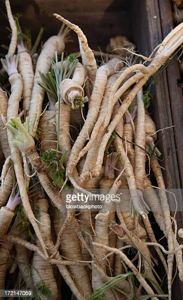 Bauernmarkt: Schwarzwurzel