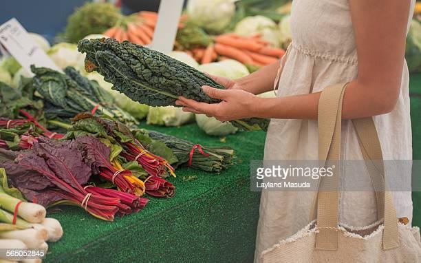 Farmers Market Vegetables - Hands
