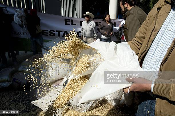 Farmers members of the organization of peasants El Barzón throw beans corn beans and sorghum grains at the building of the Economy Ministry during a...