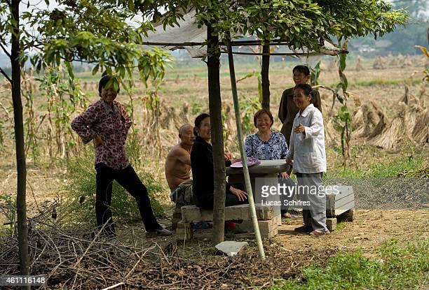 Farmers on September 11 2010 near Chengdu Sichuan province China