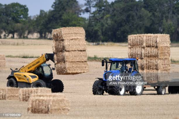 Farmers pick up straw bales with their tractors on July 23 in Guigneville centre France