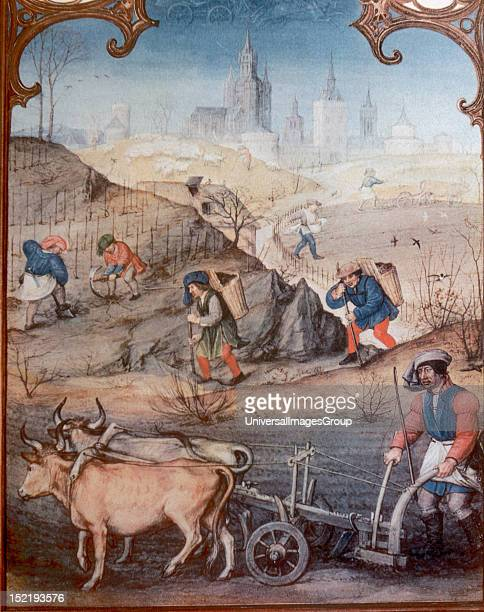 Farmers plowing and sowing Miniature of 'Grimani Breviary' Late 15th century Saint Mark's Library Venice Italy