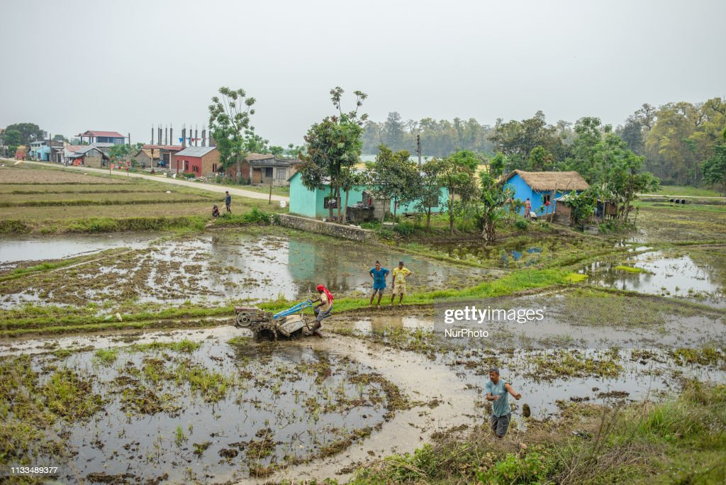 Daily Life In Chitwan National Park : News Photo