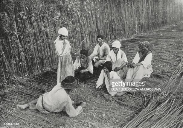 Farmers resting in a hemp field Italy photograph by Abeniacar from L'Illustrazione Italiana Year XLI No 29 July 19 1914