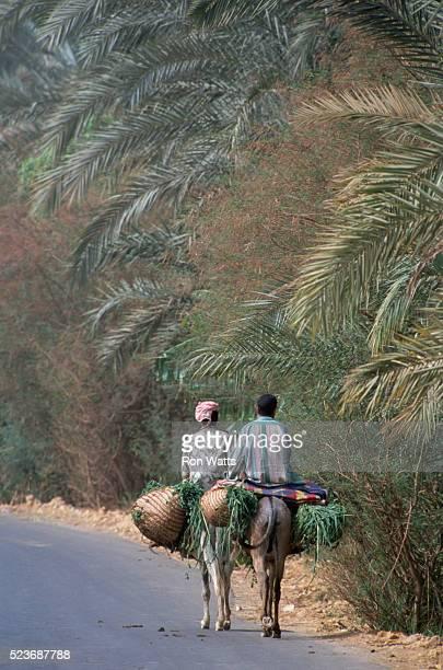 Farmers Returning from Field