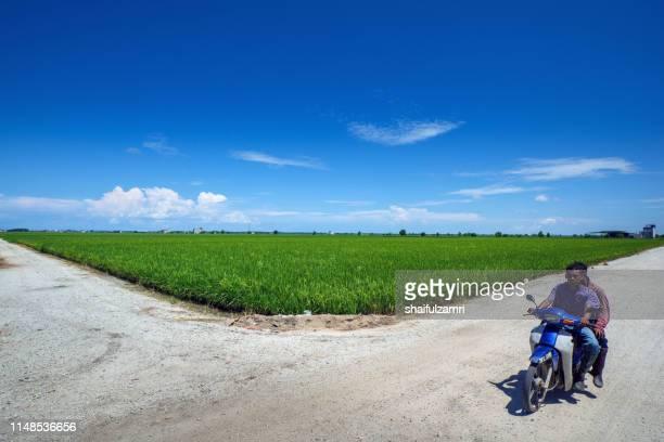farmers riding motorcycle over landscape scenery of green paddy field in sekinchan, malaysia. - shaifulzamri stockfoto's en -beelden