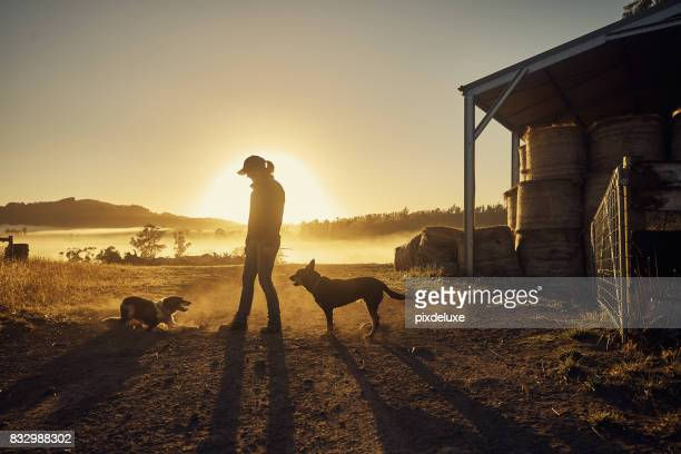 farmers rise with the sun - morning stock pictures, royalty-free photos & images