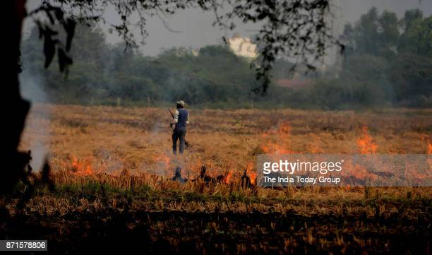 Farmers set agricultural stubble on fire in Haryana
