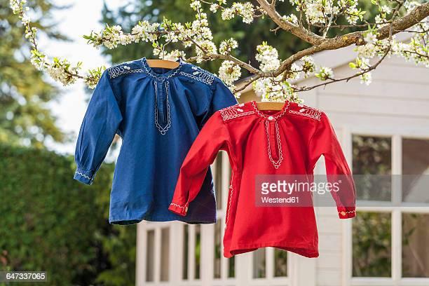 farmers' shirts hanging on tree in garden - 乾かす ストックフォトと画像