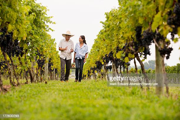 Farmers talking in vineyard