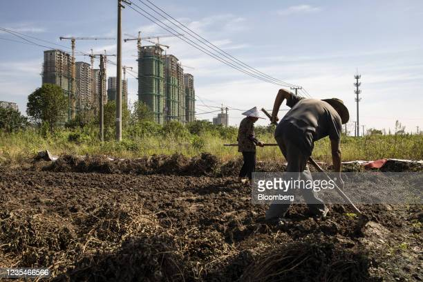Farmers tend to vegetable plot near high-rise apartment buildings at China Evergrande Group's under-construction Riverside Palace development in...