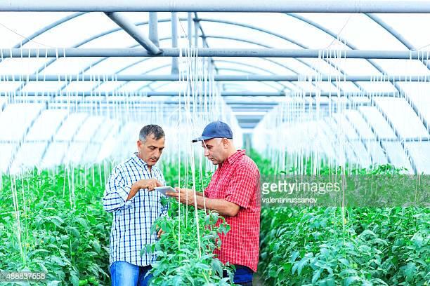 Farmers using digital tablet