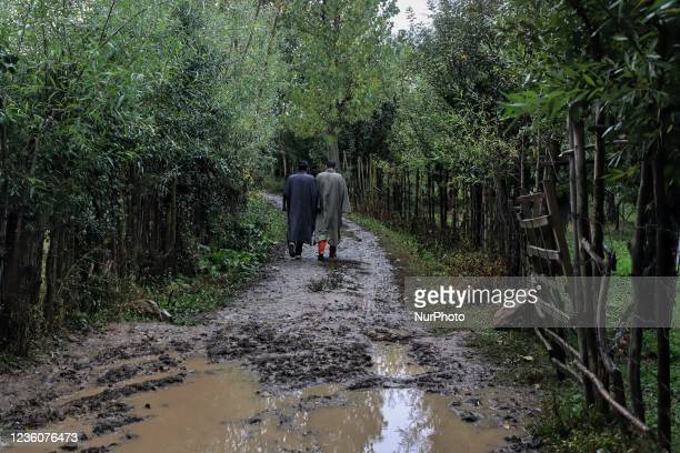 Farmers walk after paying visit to an Apple orchard in Sopore, District Baramulla, Jammu and Kashmir, India on 23 October 2021. Light to moderate...