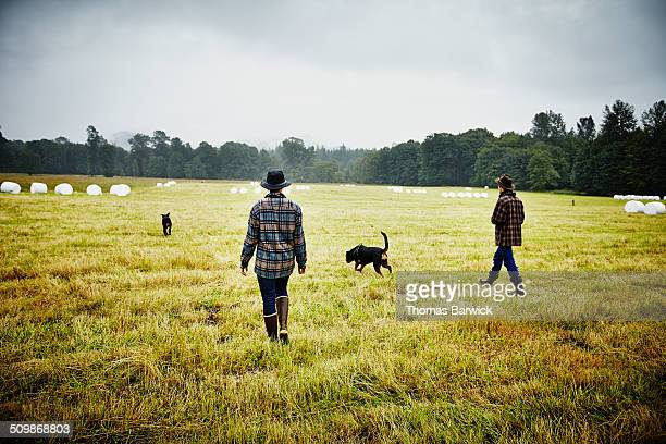 Farmers walking through field on farm with dogs