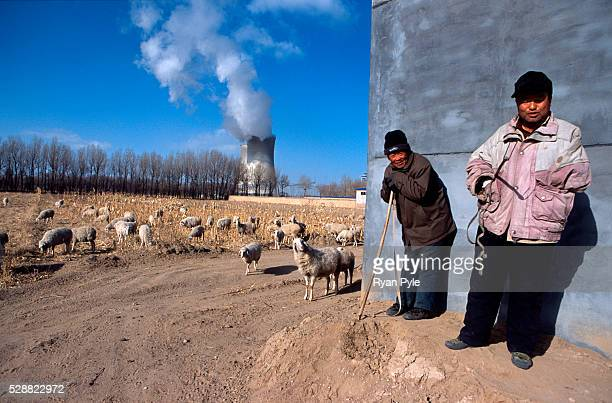 Farmers watch their sheep graze on a farm near a coal power plant in Baotou Inner Mongolia China Baotou is an excellent example of a oneindustry town...