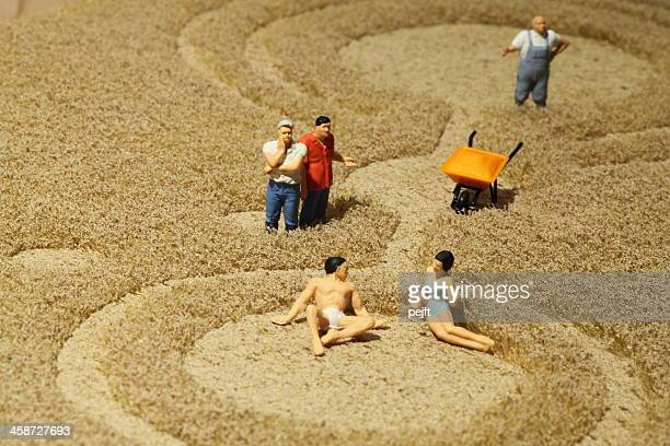 farmers watching couple sunbathing in crop circle - pejft stock pictures, royalty-free photos & images