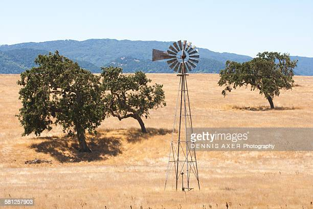 farmers windmill in california - american style windmill stock pictures, royalty-free photos & images
