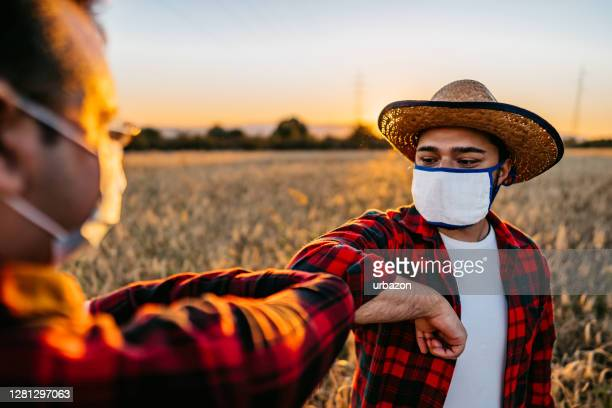 farmers with face masks greeting with elbow bump - farm worker stock pictures, royalty-free photos & images