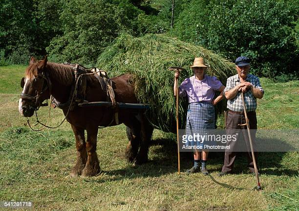 Farmers With Tools and Horse