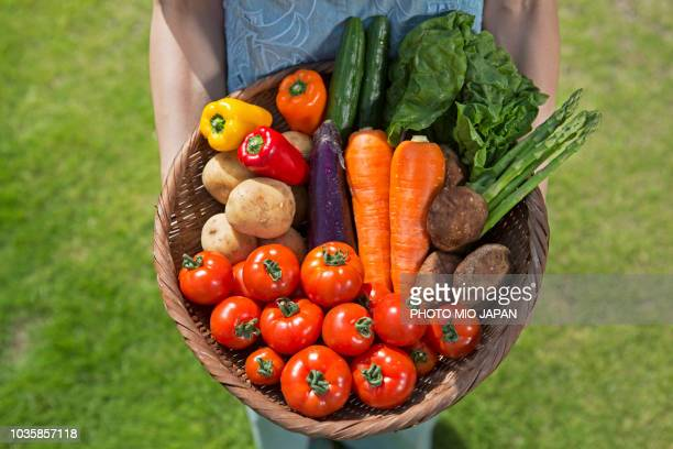 A farmer's woman having a basket within All kinds of Vegetables on a glass