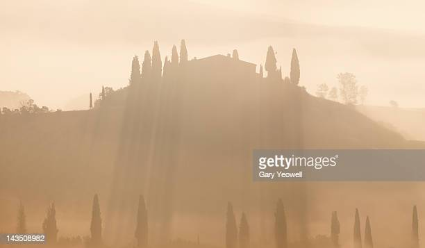 farmhouse and cypress trees in mist - yeowell stock pictures, royalty-free photos & images