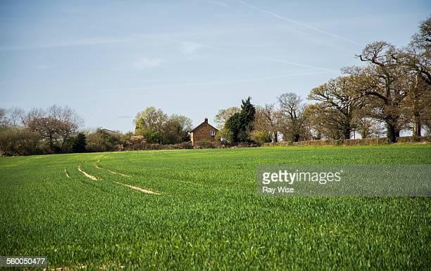 Farmhouse and farmland