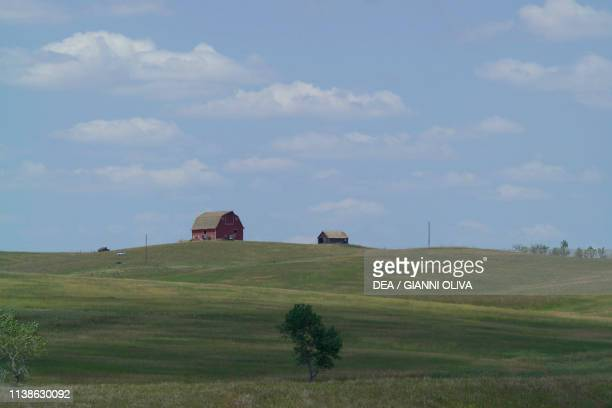 Farmhouse and tree in the prairie South Dakota United States of America