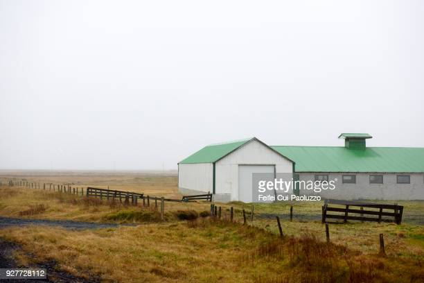 farmhouse at medalland, eastern iceland - austurland stock pictures, royalty-free photos & images